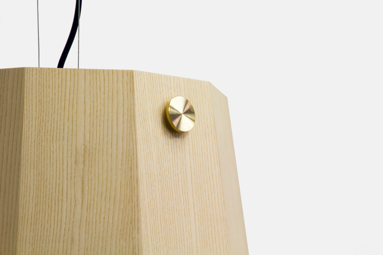 Codolagni Ashton Pendant Lamp (4)